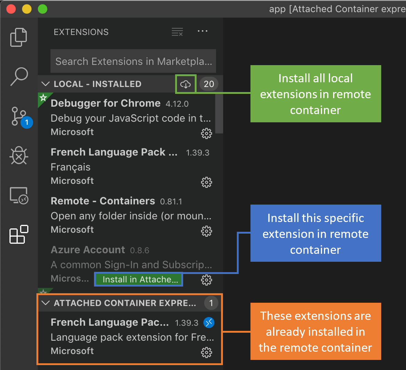 Remote Extensions view