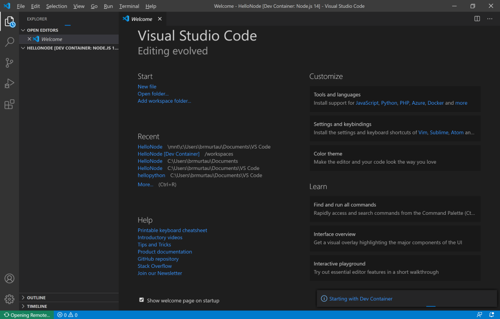 VS Code instance starting with Dev Container